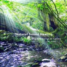 Natural Sound Healing - The Bird Songs of Spring